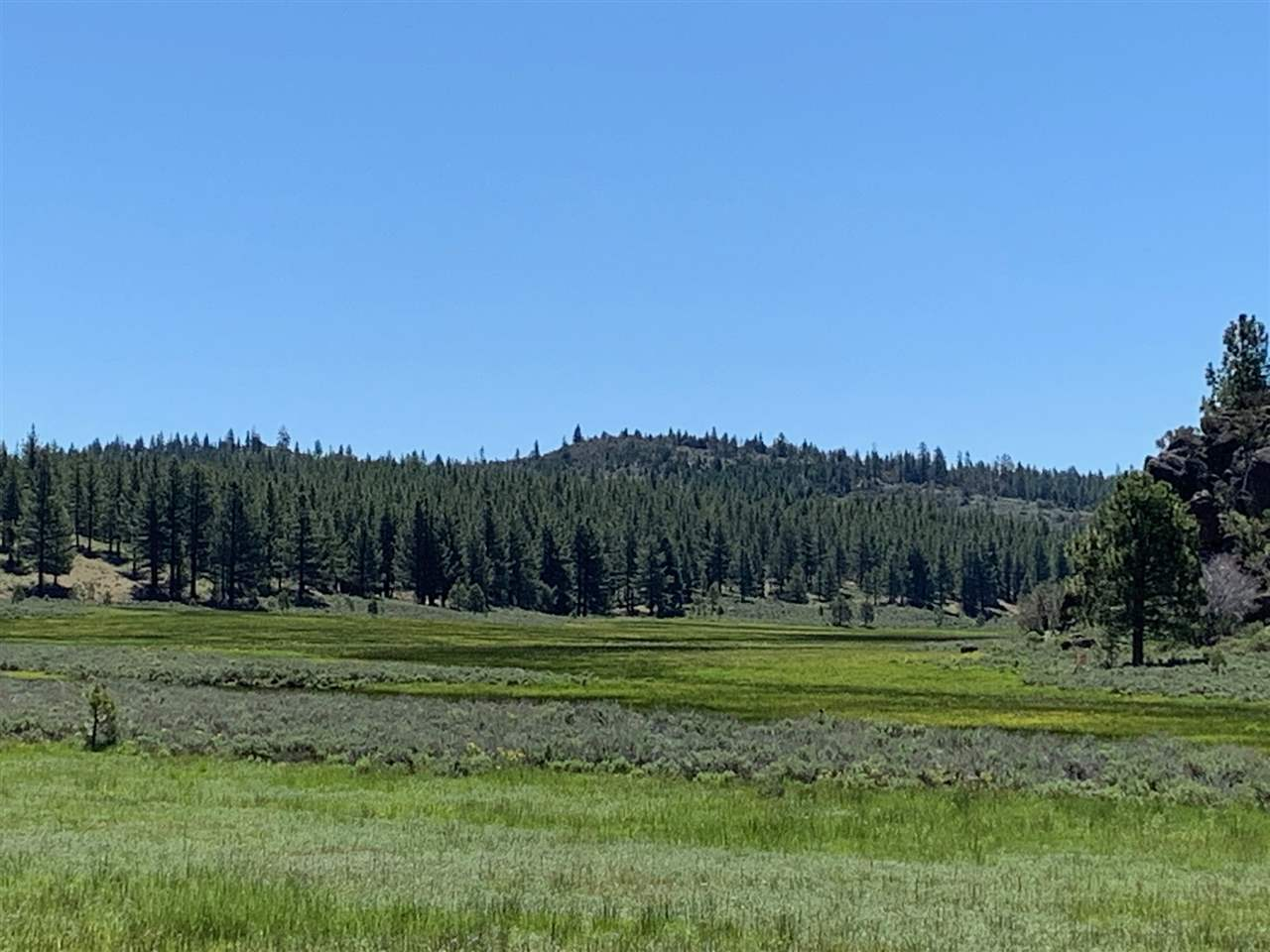 Additional photo for property listing at Lake Almanor, 加利福尼亚州 美国