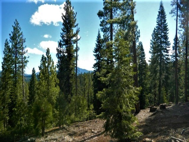 Terreno por un Venta en 12996 Timber Ridge Court Truckee, California 96161 Estados Unidos