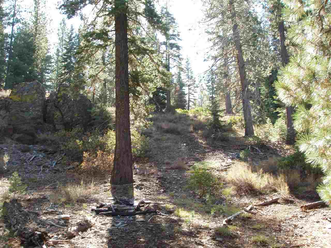 Additional photo for property listing at 10622 Actinolite Way Truckee, California 96161 United States