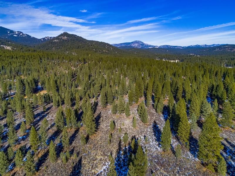 Land for Active at Parcel 4B Highway 70 Lake Almanor, California 96122 United States