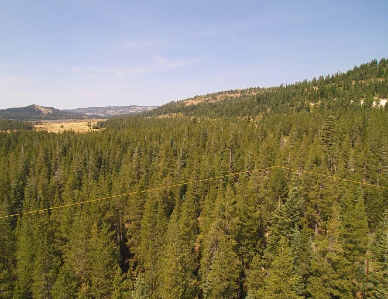 Additional photo for property listing at Norden, California United States