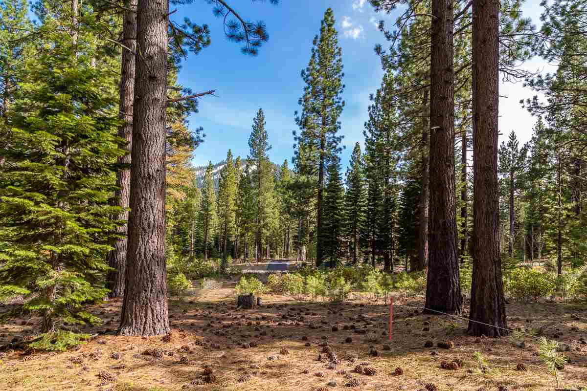 Land for Active at 8507 Wellcroft Court Truckee, California 96161 United States