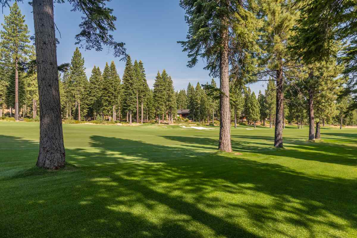 Additional photo for property listing at 10638 Olana Drive Truckee, California 96161 Estados Unidos