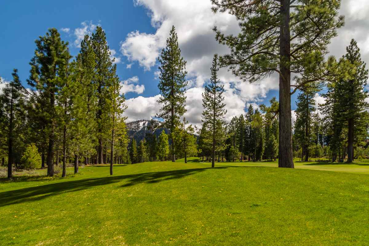 Land for Active at 10246 Dick Barter Truckee, California 96161 United States