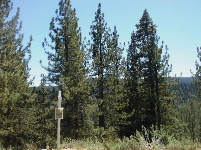 12593 E Sierra Drive, Truckee, CA 96161