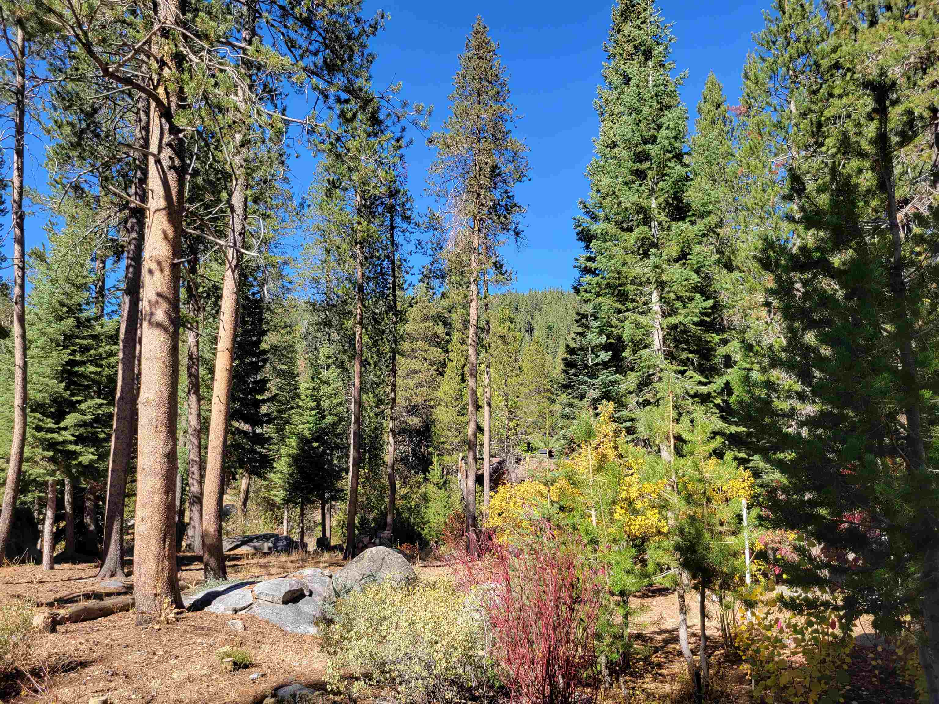 366 Indian Trail Road, Olympic Valley, CA 96146
